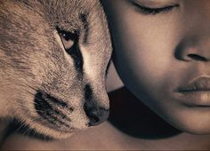 Gregory Colbert - my favorite photographer