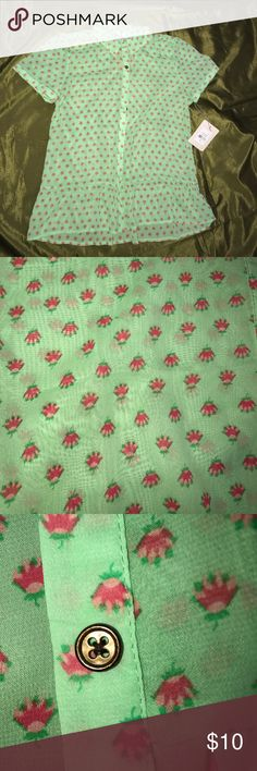 Sheer floral blouse Downeast sheer green floral blouse brand new with tags!! In excellent condition nice and light weight for spring/summer! The ruffle bottom really makes for a fun and flirty top! downeast Tops Blouses