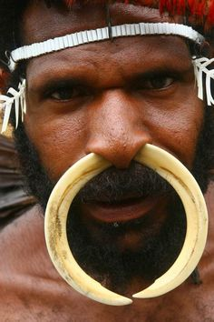"New Guinea (Papua) | ""Dani Warrior"", with a boar tusks through his nose.  Baliem Valley 
