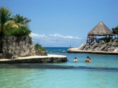 I need to be here-now!   Occidental Grand Xcaret - Playa Del Carmen, Mexico
