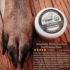 Certified Organic Nose and Paw Pad Healing Balm for Dry Chapped Cracked Skin with Hemp Oil and Shea Butter Made in USA 1 each oz -- Details can be found by clicking on the image. (This is an affiliate link) Natural Vitamin E, Dog Nose, Natural Sunscreen, Natural Preservatives, Best Moisturizer, Healing Herbs, Calendula, Hemp Oil, Healthy Skin