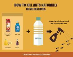 Get Rid of Ants Permanently with 7 Quick Home Remedies Use these simple home remedies to kill ants naturally (at home or outdoors).Use these simple home remedies to kill ants naturally (at home or outdoors).