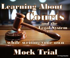 Mock Trial, part 1: Introduction to Trial Procedure