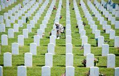memorial day 2014 denver