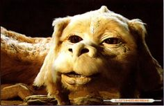 @Rachel Fogleman...it's Falcor - he's a luck dragon! : )    The NeverEnding Story