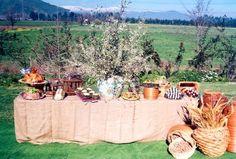 matrimonios a la chilena decoracion - Buscar con Google