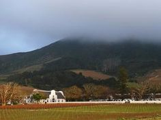 The winelands are great in any weather. ☂ Rainy Days in Cape Town - Groot Constantia #MacGrillHalfPricedWine