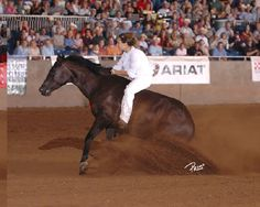Stacy Westfall is my current favorite modern horse trainer. Also a Christian, she was recently inducted into the Cowgirl Hall of Fame.