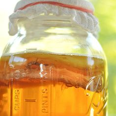 How To Make Kombucha Tea at Home | The Kitchn