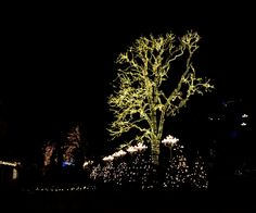 #Liseberg #Christmas #Göteborg #Sweden