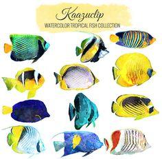 Watercolor Tropical Fish Set