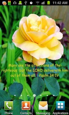 Beauyiful Flower Pictures with Scripture | Ver maior - Bible Scripture Flowers LWP para captura de ecrã Android