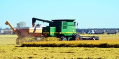 Rice harvest is starting to crank up in the home area of Grimes, CA