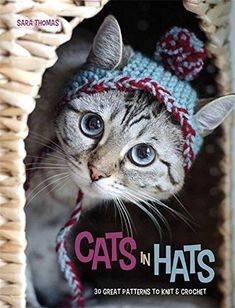 Cats in Hats: 30 Great Patterns to Knit and Crochet: Sara Thomas: 9780600630975: Amazon.com: Books
