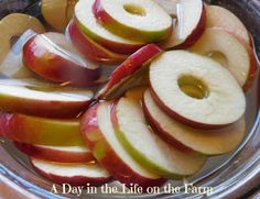 A Day in the Life on the Farm: Spiced Apples for #handcraftededibles