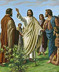 """November 27th - Luke 21:29-33: Jesus told his disciples a parable. """"Consider the fig tree and all the other trees. When their buds burst open, you see for yourselves and know that summer is now near; in the same way, when you see these things happening, know that the Kingdom of God is near. Amen, I say to you, this generation will not pass away until all these things have taken place. Heaven and earth will pass away, but my words will not pass away."""""""