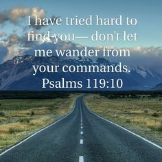 I love this verse