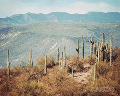 Desert landscape photography Southwest photograph by JourneysEye