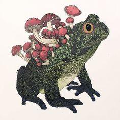Nicholas Di Genova.  Cordyseps Toad.