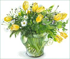Yellow tulips and spring flowers