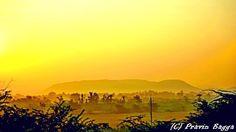 Golden foggy morning by Pravin Bagga