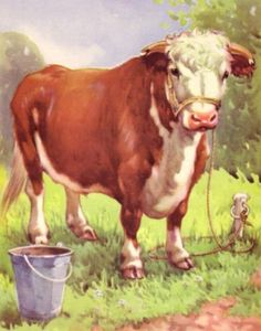 Cow Cattle Hereford Bull 70 Year Old Children's Print | eBay