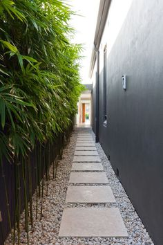 - 30 Awesome Stepping Stone Pathway Ideas Side garden, Bamboo garden, Modern l - Side Yard Landscaping, Modern Landscaping, Backyard Patio, Landscaping Ideas, Backyard Privacy, Gravel Patio, Gravel Garden, Privacy Fences, Privacy Screens