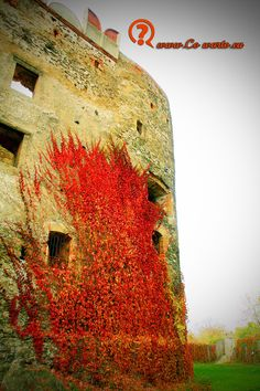 Bolkow Castle in Poland