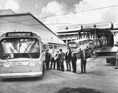 ☀Puerto Rico☀1958/MUCHAS VECES FUI AL CORRAL DE LAS GUAGUAS EN RIO PIEDRAS.EBR//