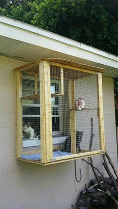 3 Safe Window Ideas for Cats: Window Box, Cat Solarium & Window Sill Perch - Uni. - 3 Safe Window Ideas for Cats: Window Box, Cat Solarium & Window Sill Perch – Unique Balcony & Gar - Cat Window Perch, Cat Perch, Window Sill, Window Boxes, Diy Cat Enclosure, Outdoor Cat Enclosure, Reptile Enclosure, Cage Chat, Cat Cages