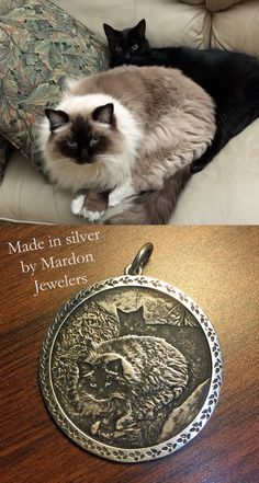 Silver Ring With Diamond Crazy Cat Lady, Crazy Cats, Funny Animals, Cute Animals, Cat Crafts, Baby Puppies, Cute Cats And Kittens, Beautiful Cats, Silver Jewelry