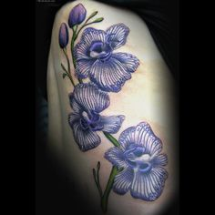 cf7af7b5b1632 Top Detail Cattleya Orchid Tattoo Tattoo's in Lists for Pinterest Orchid  Tattoo, Tattoo Designs For