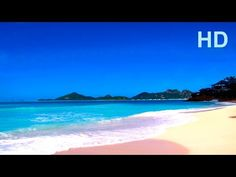 Relaxing ocean sounds and waves with seagulls at idyllic beach and Ocean Sounds, Nature Sounds, Relaxing Gif, Relaxing Music, Meditation Videos, Meditation Music, Alphaville Forever Young, Beach Scenery, Family Beach Pictures