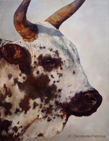 What's On My Easel? Just completed..... the portrait of a young Nguni bull.