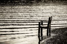 Black and White Photography.  Landscape Photography.  Lake Scenery.  Flood Waters.  Wilkesboro. North Carolina. W Kerr Scott Dam and Reservoir.
