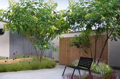 'Planten houden zich niet aan technische fiches': de nieuwe generatie tuinarchitecten - Wonen - KnackWeekend Mobile