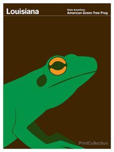 Louisiana American Green Tree Frog