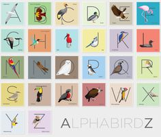 Personal project of an alphabet of bird illustrations