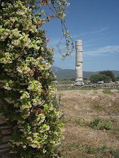 Temple of Hera, Samos, Greece