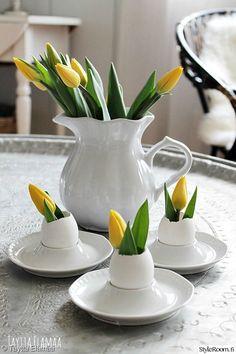 Lyhyeksi katkaistuille tulppaaneille voi maljakoksi laittaa vaikka munankuoren, kuten teki jäsenemme Tayttaelamaa. #pääsiäinen #easter #diy #kodinsisustus #tulips #tulppaanit