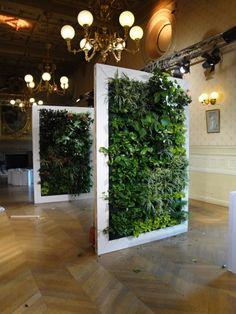 Mur végétal d'intérieur Flowall