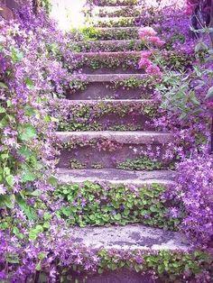 Stairways to your vacation house? #Vakantie #Vakantiehuizen #Stairways #Trappen