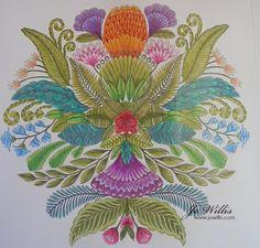 Millie Marotta Animal Kingdom Colouring Page