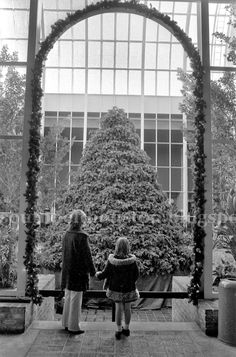 South Belt Houston Digital History Archive: Christmas at Almeda Mall 1976