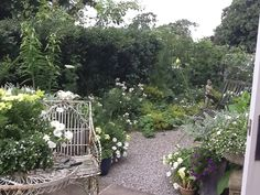 Dreamy Outdoor Gardens, Outdoor Living, Space, Plants, Floor Space, Outdoor Life, Plant, The Great Outdoors, Outdoors