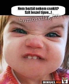 Hinny a mindönit! Funny Photos, Have Fun, Jokes, Lol, Smile, Drink, Schmuck, Funny Pics, Jokes Quotes