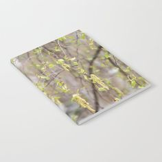 Blossoming birch tree in spring Notebook by poppyshome Journal Entries, Wraparound, Floral Tie, Notebooks, Minimal, Doodles, Deep, Ink, Printed