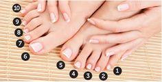 Pés – Egípcio, grego ou romano?    É quase assumido que todos os pés são iguais, mas se repararmos ...