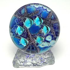 salazar Paperweights | blue angelfish reef sphere with stand