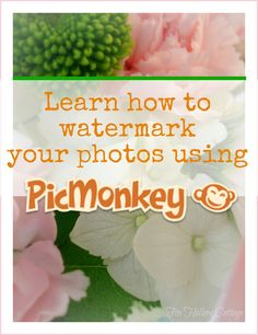 Watermark with PicMonkey. #watermark #pictures #photographs